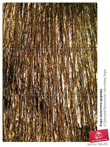Кора золотого дерева, фото № 165472, снято 4 января 2008 г. (c) Григорий Белоногов / Фотобанк Лори
