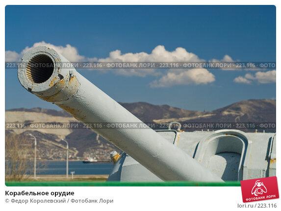 Корабельное орудие, фото № 223116, снято 12 марта 2008 г. (c) Федор Королевский / Фотобанк Лори