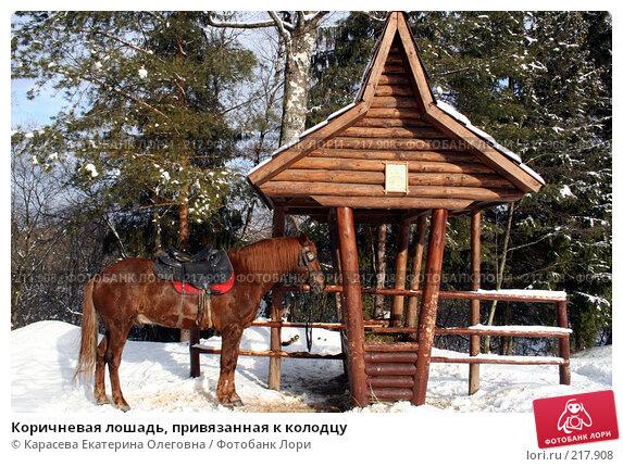 Коричневая лошадь, привязанная к колодцу, фото № 217908, снято 3 февраля 2008 г. (c) Карасева Екатерина Олеговна / Фотобанк Лори