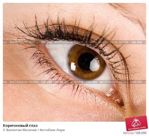Купить «Коричневый глаз», фото № 108096, снято 5 августа 2007 г. (c) Валентин Мосичев / Фотобанк Лори