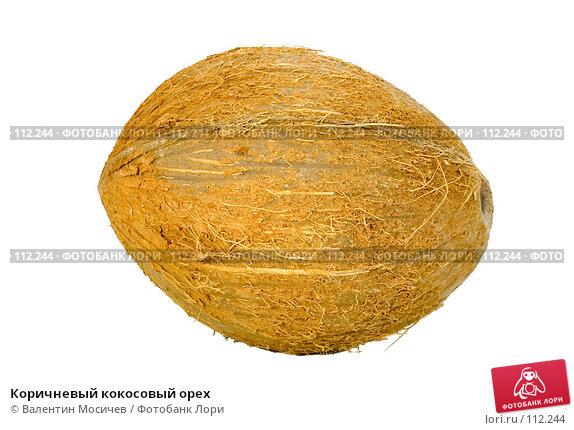 Коричневый кокосовый орех, фото № 112244, снято 20 января 2007 г. (c) Валентин Мосичев / Фотобанк Лори