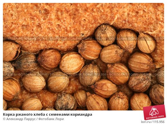 Корка ржаного хлеба с семенами кориандра, фото № 115956, снято 14 сентября 2007 г. (c) Александр Паррус / Фотобанк Лори