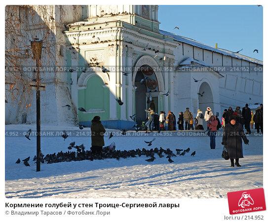 Кормление голубей у стен Троице-Сергиевой лавры, фото № 214952, снято 4 января 2008 г. (c) Владимир Тарасов / Фотобанк Лори