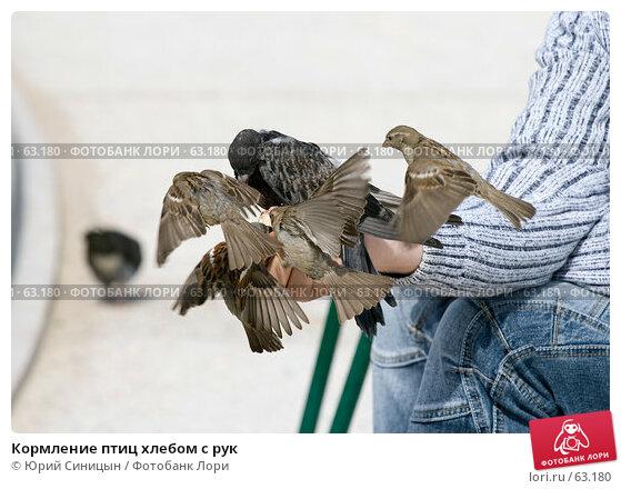 Кормление птиц хлебом с рук, фото № 63180, снято 23 июня 2007 г. (c) Юрий Синицын / Фотобанк Лори