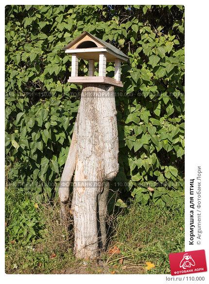 Кормушка для птиц, фото № 110000, снято 30 сентября 2007 г. (c) Argument / Фотобанк Лори