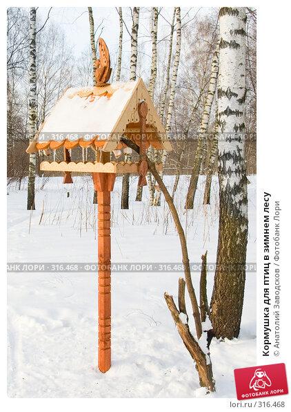 Кормушка для птиц в зимнем лесу, фото № 316468, снято 21 февраля 2005 г. (c) Анатолий Заводсков / Фотобанк Лори