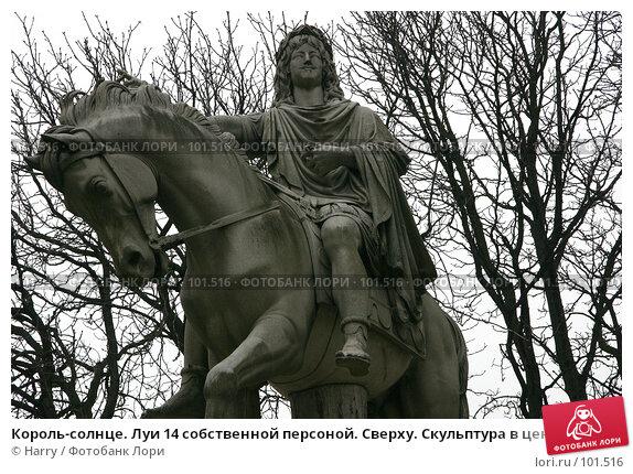 Король-солнце. Луи 14 собственной персоной. Сверху. Скульптура в центре площади Пляс де Вож, Париж, Франция., фото № 101516, снято 22 февраля 2006 г. (c) Harry / Фотобанк Лори