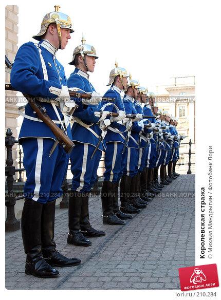 Королевская стража, фото № 210284, снято 10 января 2005 г. (c) Михаил Мандрыгин / Фотобанк Лори