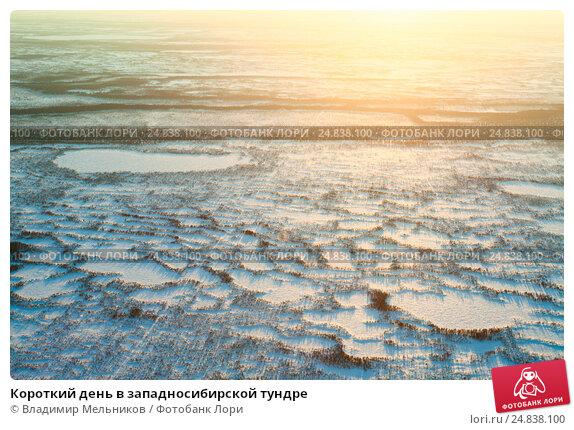 Короткий день в западносибирской тундре, фото № 24838100, снято 2 апреля 2013 г. (c) Владимир Мельников / Фотобанк Лори