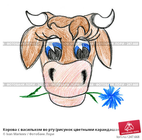 Купить «Корова с васильком во рту (рисунок цветными карандашами)», иллюстрация № 247668 (c) Ivan Markeev / Фотобанк Лори