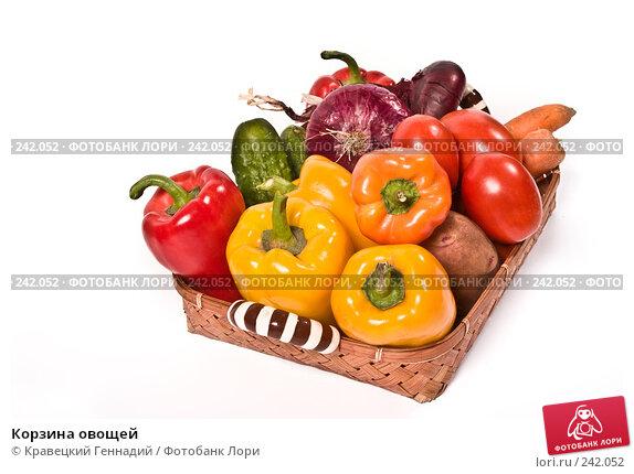 Корзина овощей, фото № 242052, снято 18 августа 2017 г. (c) Кравецкий Геннадий / Фотобанк Лори