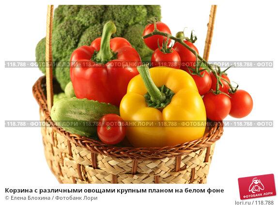 Корзина с различными овощами крупным планом на белом фоне, фото № 118788, снято 24 июля 2007 г. (c) Елена Блохина / Фотобанк Лори
