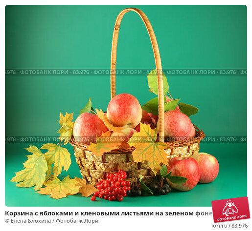 Корзина с яблоками и кленовыми листьями на зеленом фоне, фото № 83976, снято 13 сентября 2007 г. (c) Елена Блохина / Фотобанк Лори