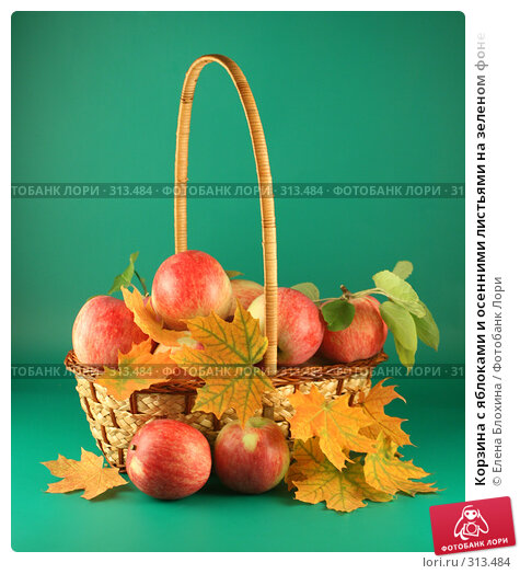 Корзина с яблоками и осенними листьями на зеленом фоне, фото № 313484, снято 13 сентября 2007 г. (c) Елена Блохина / Фотобанк Лори
