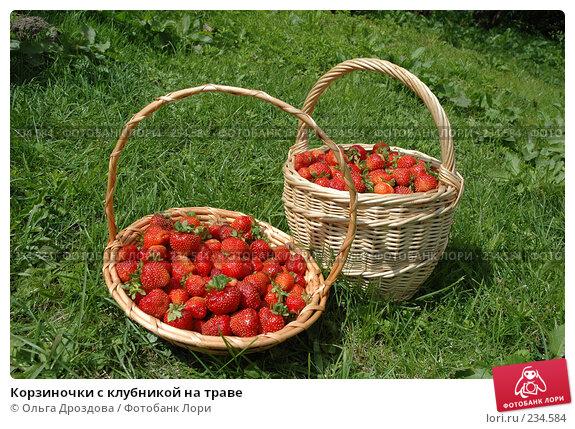 Корзиночки с клубникой на траве, фото № 234584, снято 10 июля 2005 г. (c) Ольга Дроздова / Фотобанк Лори