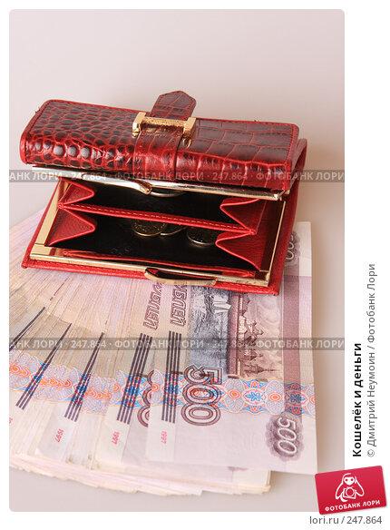 Кошелёк и деньги, эксклюзивное фото № 247864, снято 8 апреля 2008 г. (c) Дмитрий Неумоин / Фотобанк Лори
