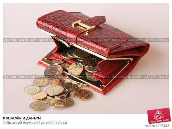 Кошелёк и деньги, эксклюзивное фото № 247868, снято 8 апреля 2008 г. (c) Дмитрий Неумоин / Фотобанк Лори