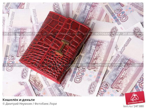 Кошелёк и деньги, эксклюзивное фото № 247880, снято 8 апреля 2008 г. (c) Дмитрий Неумоин / Фотобанк Лори