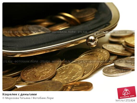 Кошелек с деньгами, фото № 272824, снято 13 декабря 2007 г. (c) Морозова Татьяна / Фотобанк Лори