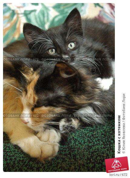 Кошка с котенком, фото № 672, снято 28 июня 2005 г. (c) Юлия Яковлева / Фотобанк Лори