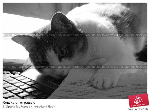 Кошка с тетрадью, эксклюзивное фото № 27180, снято 2 февраля 2006 г. (c) Ирина Мойсеева / Фотобанк Лори