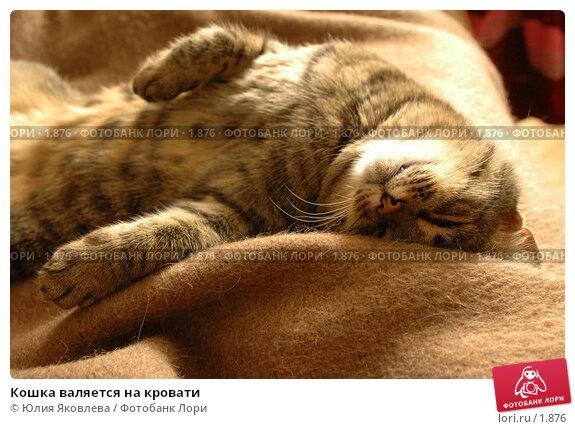 Кошка валяется на кровати, фото № 1876, снято 21 марта 2006 г. (c) Юлия Яковлева / Фотобанк Лори