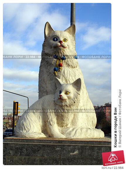 Купить «Кошки в городе Ван», фото № 22984, снято 2 декабря 2006 г. (c) Валерий Шанин / Фотобанк Лори