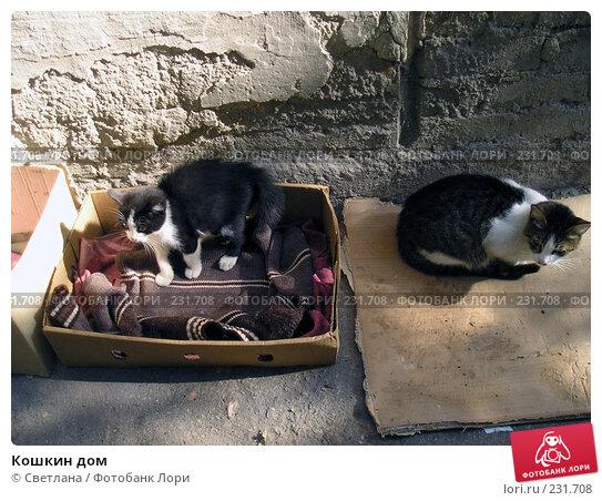 Купить «Кошкин дом», фото № 231708, снято 21 октября 2006 г. (c) Светлана / Фотобанк Лори