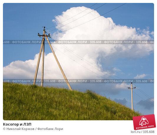 Косогор и ЛЗП, фото № 335608, снято 21 июня 2008 г. (c) Николай Коржов / Фотобанк Лори