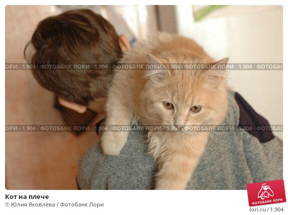 Кот на плече, фото № 1904, снято 22 марта 2006 г. (c) Юлия Яковлева / Фотобанк Лори