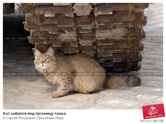 Кот забился под гусеницу танка, фото № 180148, снято 6 апреля 2007 г. (c) Сергей Попсуевич / Фотобанк Лори