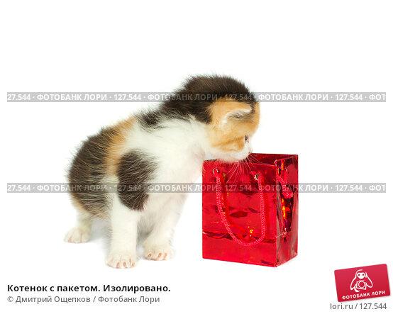 Котенок с пакетом. Изолировано., фото № 127544, снято 23 ноября 2007 г. (c) Дмитрий Ощепков / Фотобанк Лори