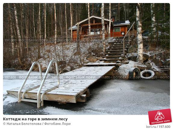 Коттедж на горе в зимнем лесу, фото № 197600, снято 16 декабря 2007 г. (c) Наталья Белотелова / Фотобанк Лори