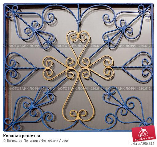Купить «Кованая решетка», фото № 250612, снято 25 марта 2008 г. (c) Вячеслав Потапов / Фотобанк Лори