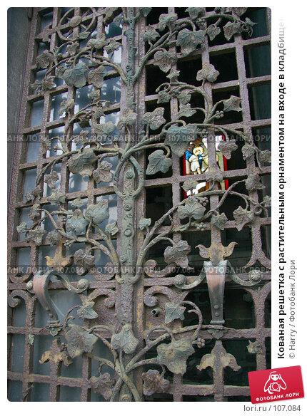 Кованая решетка с растительным орнаментом на входе в кладбищенский склеп, фото № 107084, снято 26 февраля 2006 г. (c) Harry / Фотобанк Лори