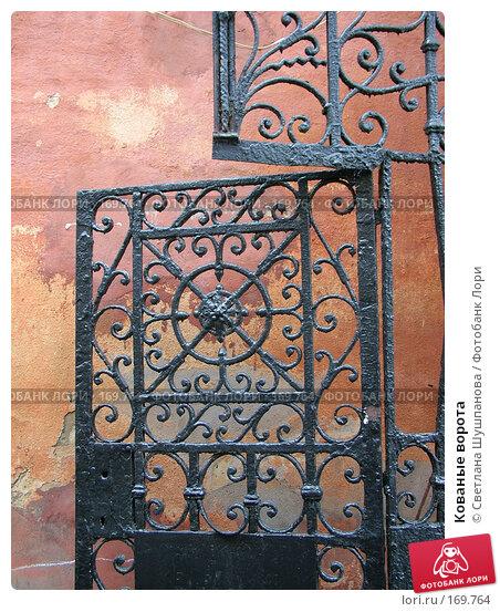Купить «Кованые ворота», фото № 169764, снято 6 января 2006 г. (c) Светлана Шушпанова / Фотобанк Лори