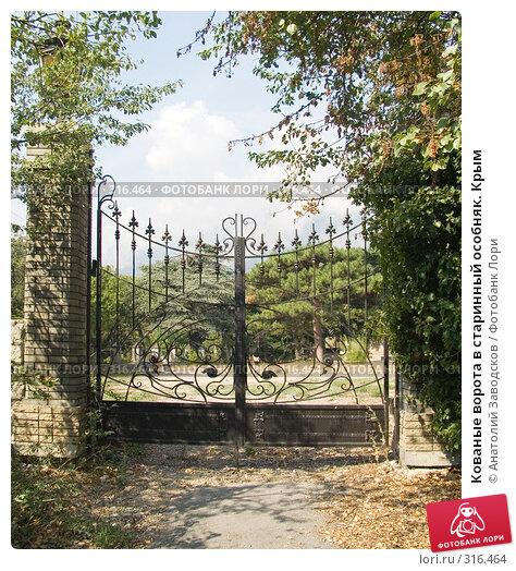 Кованые ворота в старинный особняк. Крым, фото № 316464, снято 15 сентября 2005 г. (c) Анатолий Заводсков / Фотобанк Лори