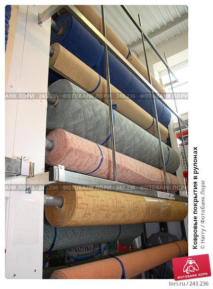 Купить «Ковровые покрытия в рулонах», фото № 243236, снято 29 мая 2005 г. (c) Harry / Фотобанк Лори