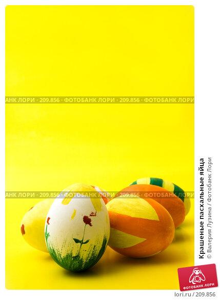 Крашеные пасхальные яйца, фото № 209856, снято 26 февраля 2008 г. (c) Валерия Потапова / Фотобанк Лори