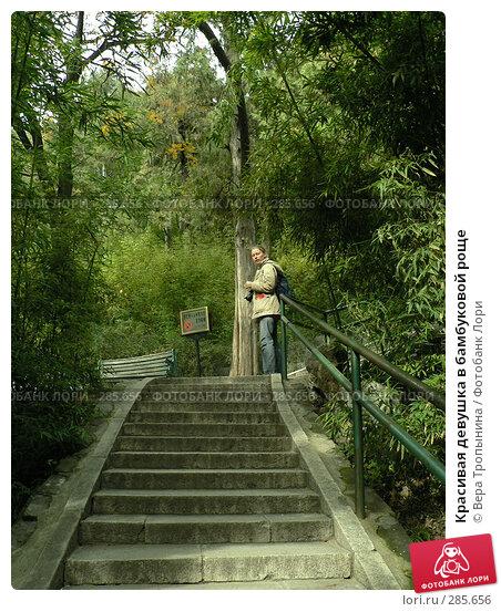 Красивая девушка в бамбуковой роще, фото № 285656, снято 27 марта 2017 г. (c) Вера Тропынина / Фотобанк Лори