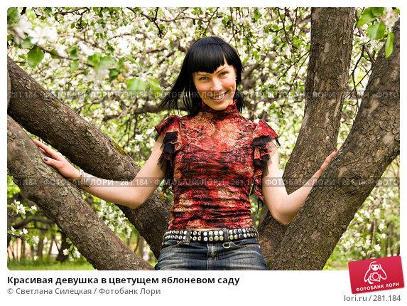 Красивая девушка в цветущем яблоневом саду, фото № 281184, снято 12 мая 2008 г. (c) Светлана Силецкая / Фотобанк Лори