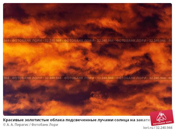 Купить «Красивые золотистые облака подсвеченные лучами солнца на закате плывут по фиолетовому небу», фото № 32240944, снято 10 сентября 2019 г. (c) А. А. Пирагис / Фотобанк Лори