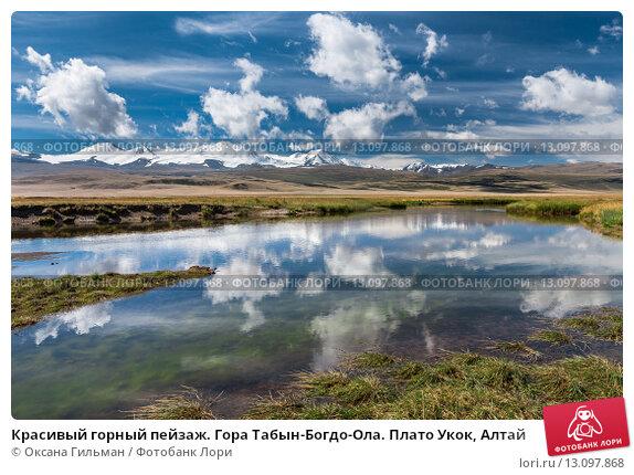 Купить «Красивый горный пейзаж. Гора Табын-Богдо-Ола. Плато Укок, Алтай», фото № 13097868, снято 10 августа 2015 г. (c) Оксана Гильман / Фотобанк Лори