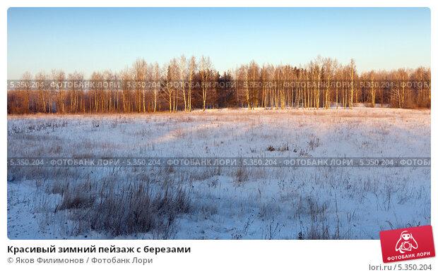 Купить «Красивый зимний пейзаж с березами», фото № 5350204, снято 18 декабря 2012 г. (c) Яков Филимонов / Фотобанк Лори