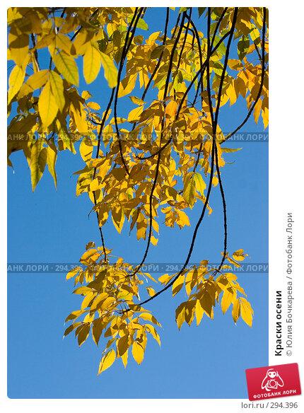 Краски осени, фото № 294396, снято 20 сентября 2005 г. (c) Юлия Бочкарева / Фотобанк Лори