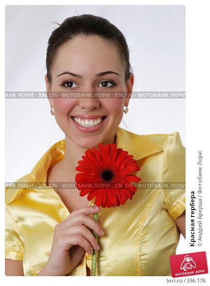 Купить «Красная гербера», фото № 336176, снято 5 апреля 2008 г. (c) Андрей Аркуша / Фотобанк Лори