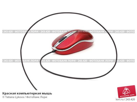 Красная компьютерная мышь, фото № 243420, снято 17 марта 2008 г. (c) Tatiana Lykova / Фотобанк Лори