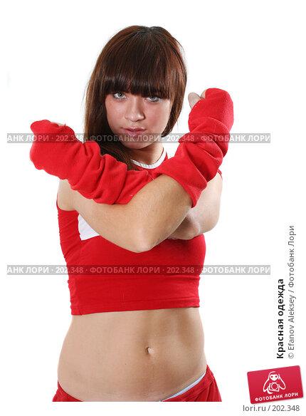 Купить «Красная одежда», фото № 202348, снято 9 февраля 2008 г. (c) Efanov Aleksey / Фотобанк Лори