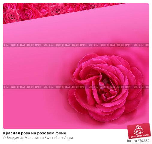 Красная роза на розовом фоне, фото № 70332, снято 18 июля 2005 г. (c) Владимир Мельников / Фотобанк Лори