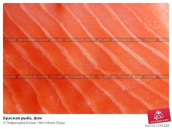 Красная рыба, фон, фото № 215020, снято 4 марта 2008 г. (c) Лифанцева Елена / Фотобанк Лори